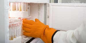 Importance of Ultra Low Freezing Tests in Quality Assurance